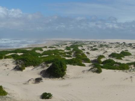 38 km di dune sul mare a Port Stephen