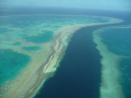 Great Reef Australia