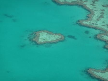 heart reef 3