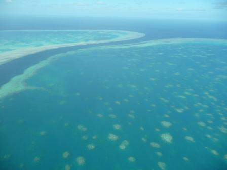 Great barrier reef 6