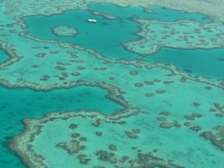 Great barrier reef 1