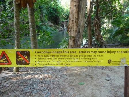 warning crocodile!