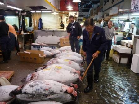 fish mkt11