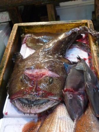 fish mkt14