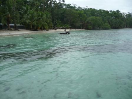 Isla Carenero2